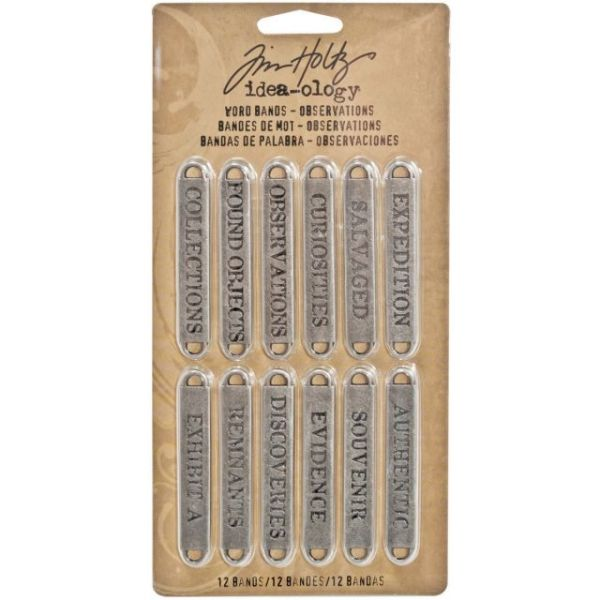 "Idea-Ology Metal Word Bands .375""X2.25"" 12/Pkg"