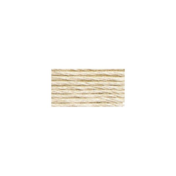 DMC Six Strand Embroidery Floss (3033)