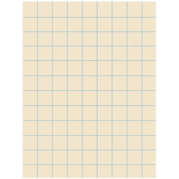 Pacon Ruled Drawing Paper