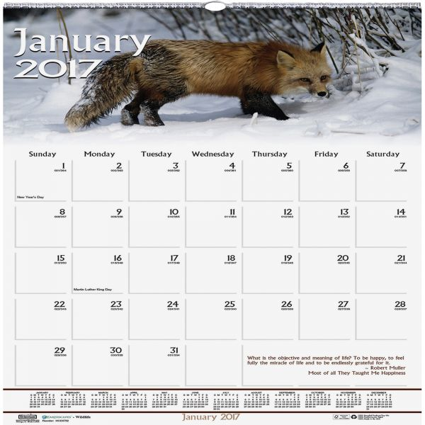 House of Doolittle Wildlife Monthly Wall Calendar