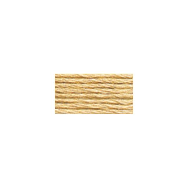DMC Six Strand Embroidery Floss (738)