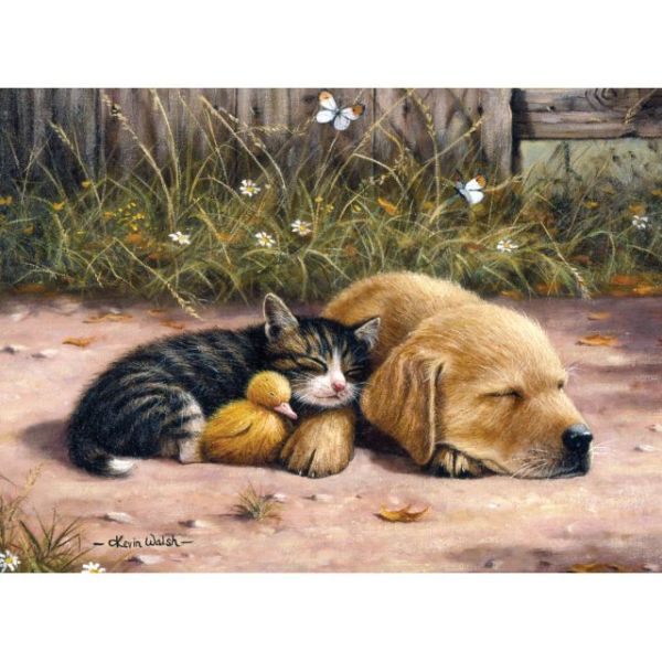 """Junior Large Paint By Number Kit 15.25""""X11.25"""""""