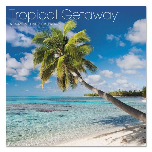 At-A-Glance Landmark Tropical Getaway Monthly Wall Calendar