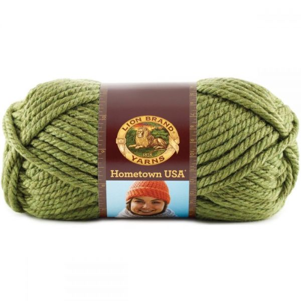Lion Brand Hometown USA Yarn - Oklahoma City Green