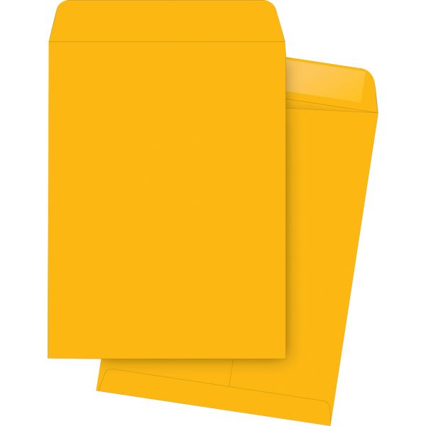 "Business Source 10"" x 13"" Catalog Envelopes"