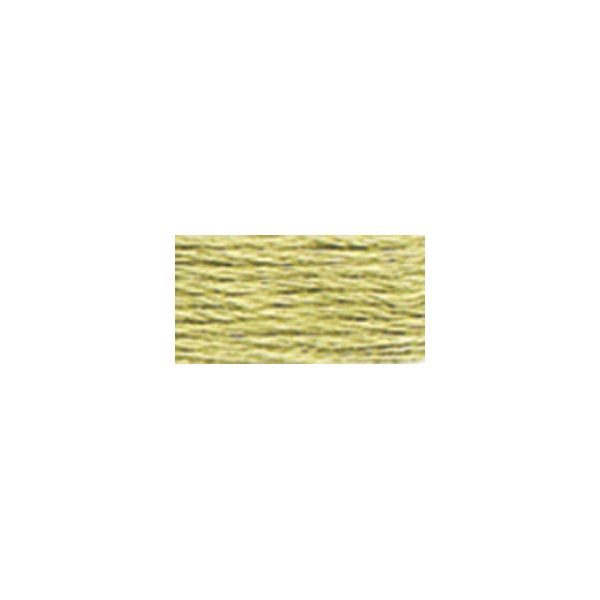 DMC Six Strand Embroidery Floss (3013)