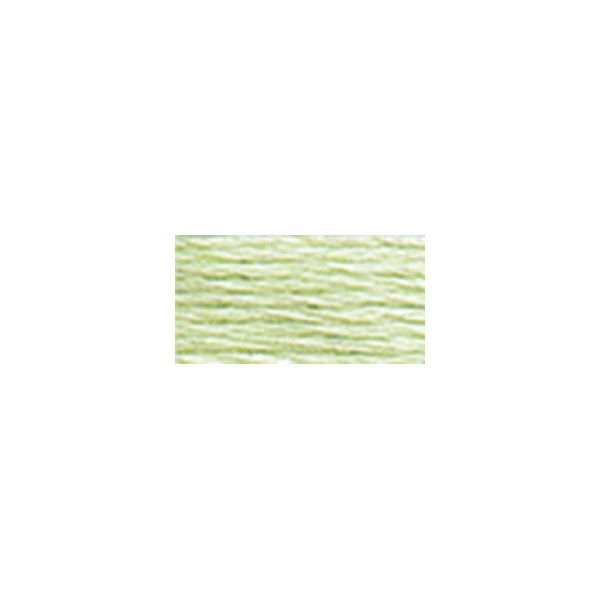 DMC Six Strand Embroidery Floss (772)