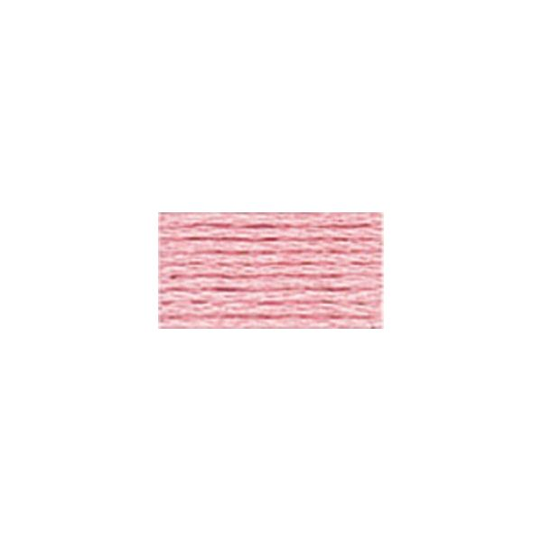 DMC Six Strand Embroidery Floss (761)