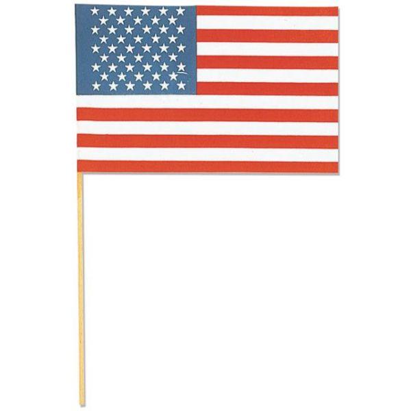 """Flag 6""""X9"""" 1/Pkg"""