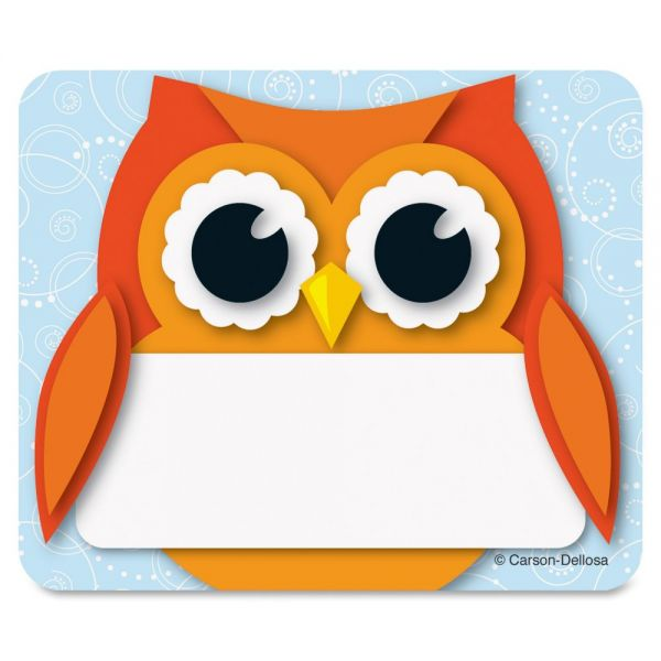 Carson-Dellosa Colorful Owl Name Tags