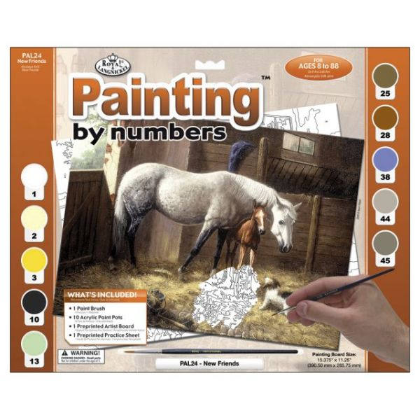 Adult Paint By Number Kit