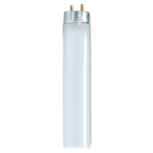 "Satco 25-watt 48"" T8 Fluorescent Bulb"