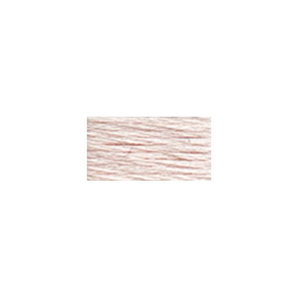 DMC Six Strand Embroidery Floss (819)