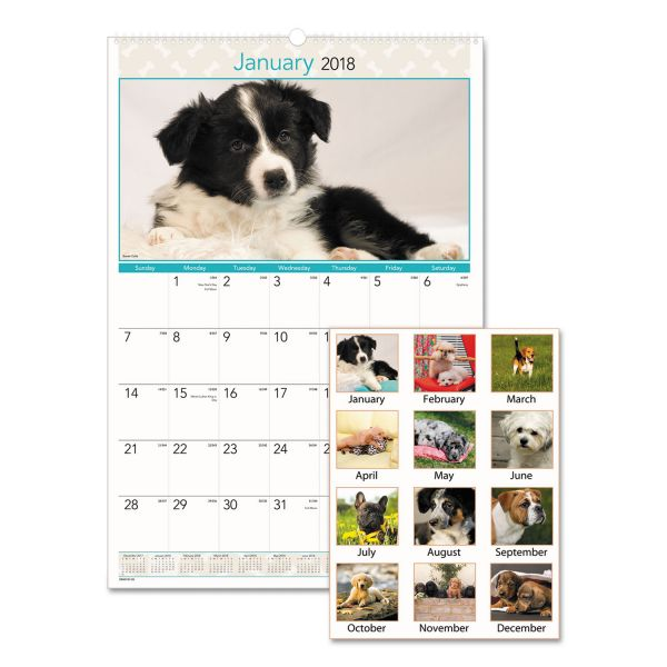Visual Organizer Full-Color Puppies Photographic Monthly Wall Calendar