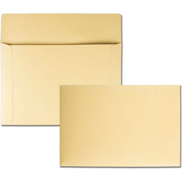 "Quality Park 10"" x 14 3/4"" Booklet Envelopes"