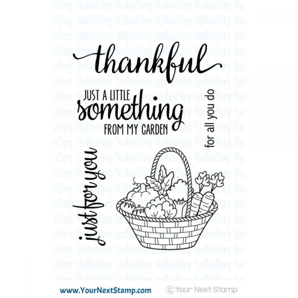 """Your Next Stamp Clear Stamps 3""""X4"""""""
