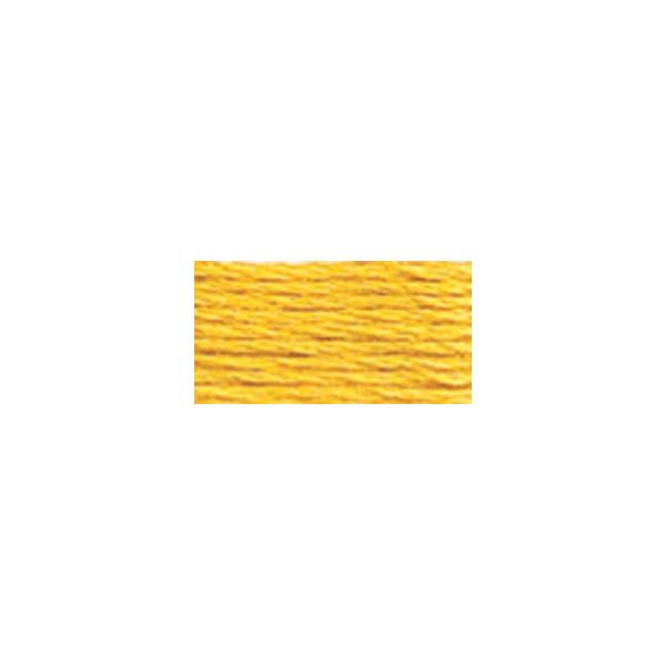 DMC Six Strand Embroidery Floss (725)