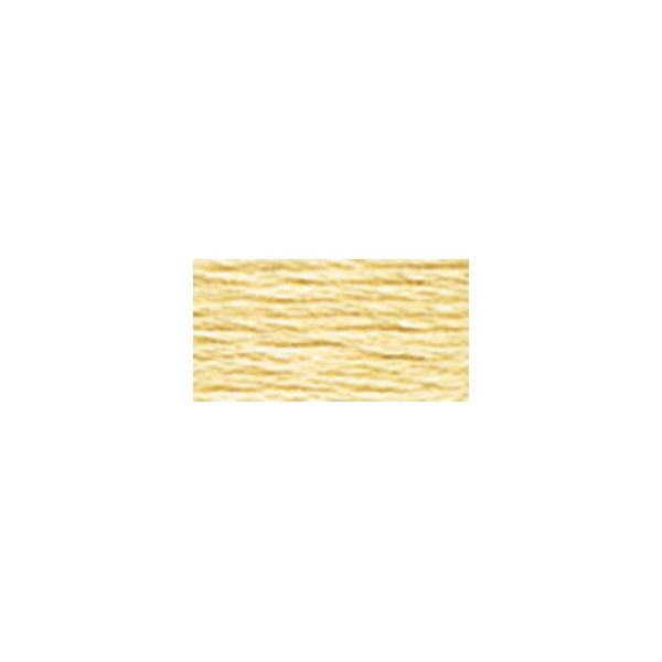 DMC Six Strand Embroidery Floss (677)