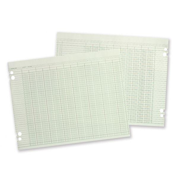 Wilson Jones Accounting Sheets, 6 Cols, 9-1/4 x 11-7/8 , GN, 100 Loose Sheets/pk
