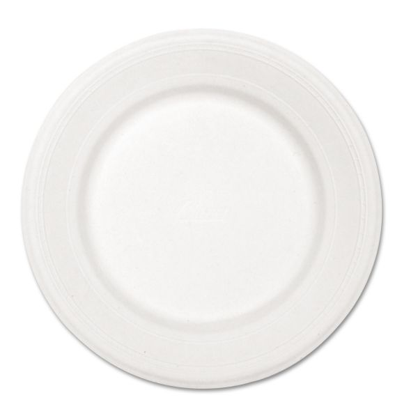 "Chinet 10"" Paper Plates"