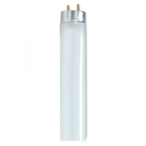 Satco 32-watt T8 Fluorescent Bulbs
