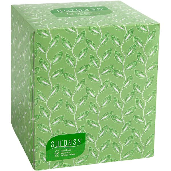 Kleenex Surpass 2-Ply Facial Tissues