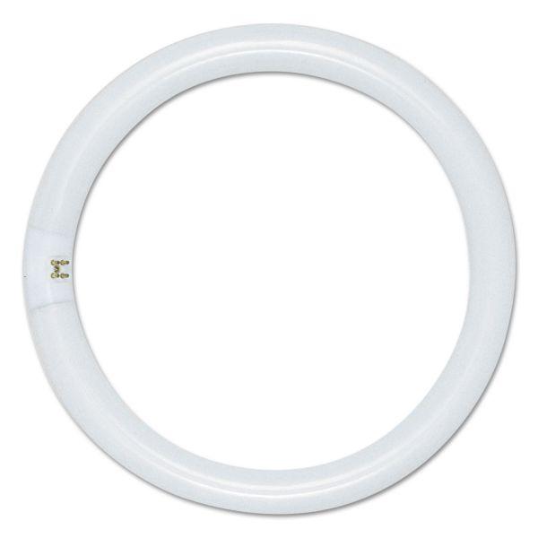 Satco 22-watt T9 Circle Fluorescent Tube Lamp