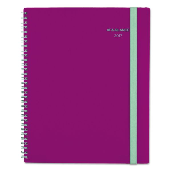 At-A-Glance Color Play Weekly/Monthly Planner