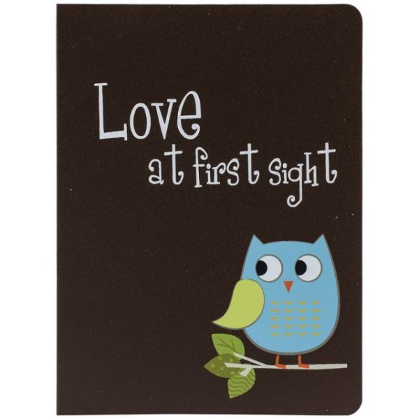 "Baby Owl Brag Book Album 4""X6"" 36 Pockets"