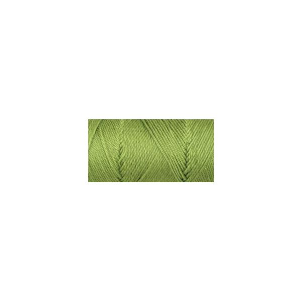 Caron Simply Soft Collection Yarn - Pistachio