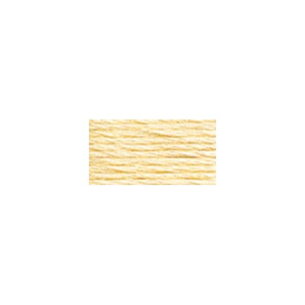 DMC Six Strand Embroidery Floss (3823)