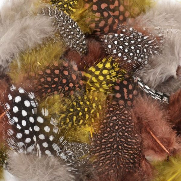 Dyed Guinea Feathers