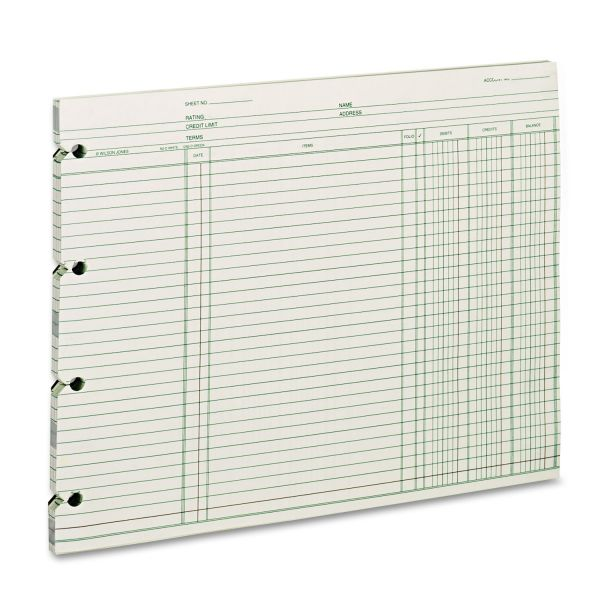 Wilson Jones Regular Ledger Sheets