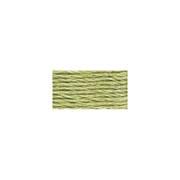 DMC Six Strand Embroidery Floss (3053)