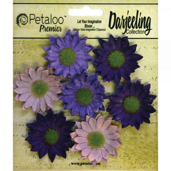 "Darjeeling Mini Daisies 1.25"" 7/Pkg"