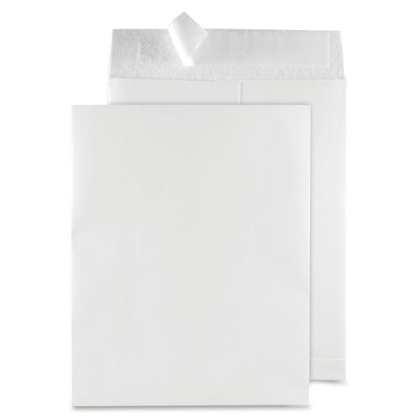Quality Park Snowpack Envelopes