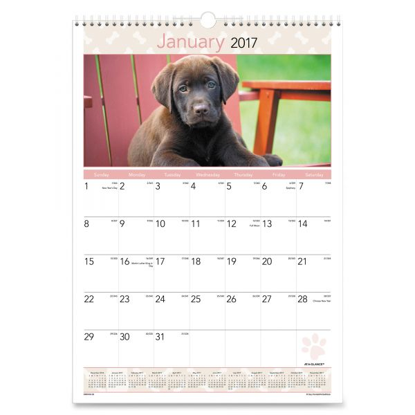 At-A-Glance Puppy Images Monthly Wall Calendar