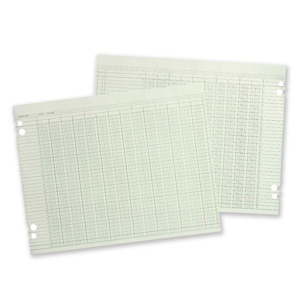 Wilson Jones Accounting Sheets, 20-Col, 9-1/4 x 11-7/8, 100 Loose Sheets/pk, GN