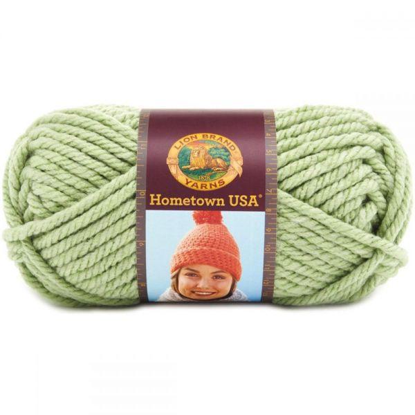 Lion Brand Hometown USA Yarn - Savannah Sage