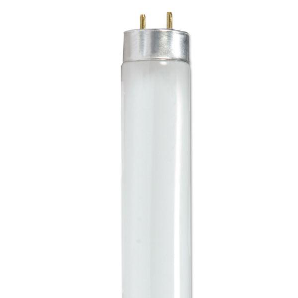 Satco 32-watt T8 Fluorescent Bulbs