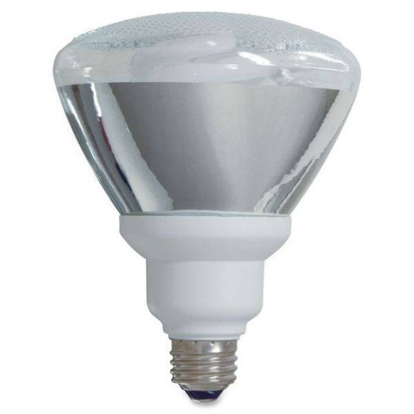 GE 26-watt PAR38 Fluorescent Lamp