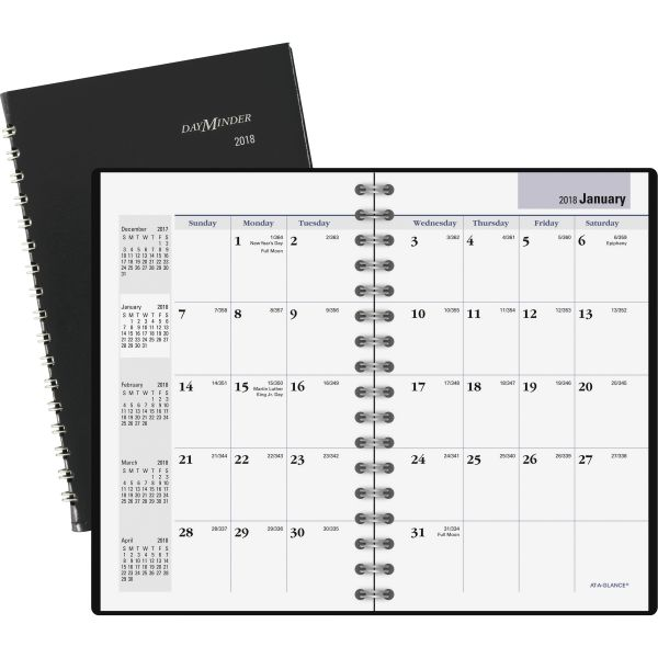 At-A-Glance DayMinder Recycled Monthly Pocket Planner