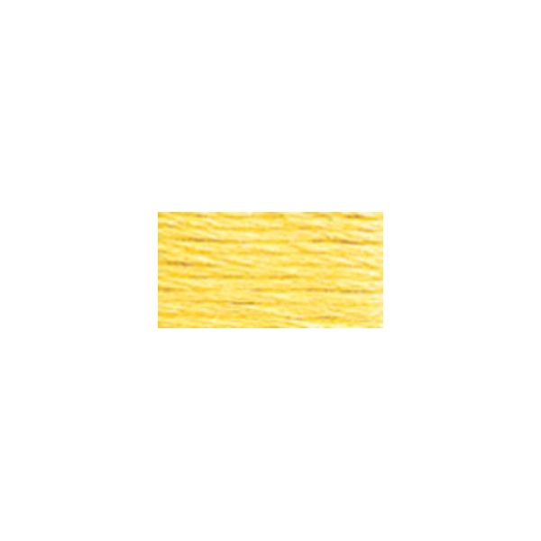 DMC Six Strand Embroidery Floss (717)