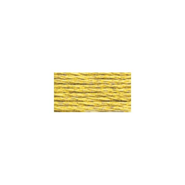DMC 6-Strand Embroidery Floss (834)