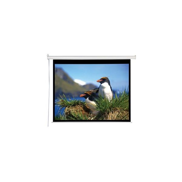 Draper Electrol Projection Screen