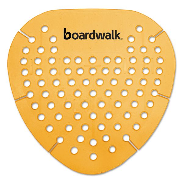 Boardwalk Urinal Screen
