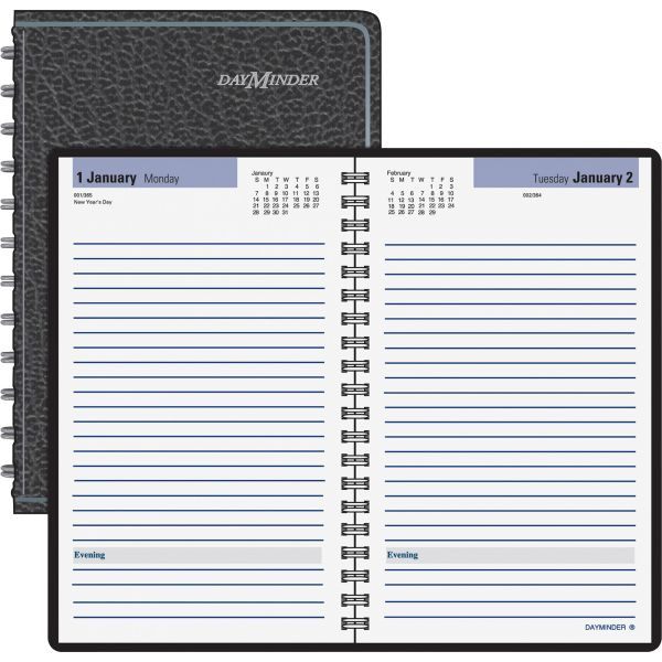 At-A-Glance DayMinder Daily Planner