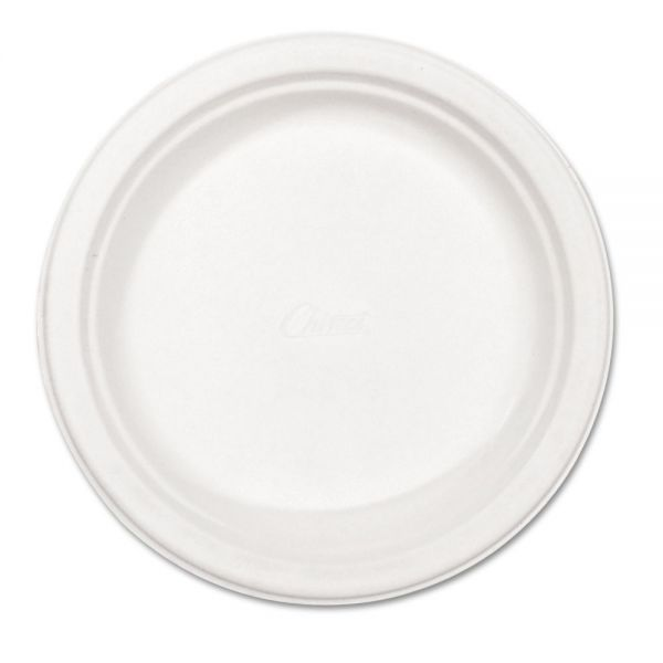 """Chinet 8 3/4"""" Paper Plates"""