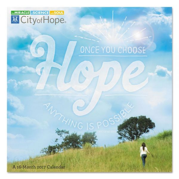 At-A-Glance Day Dream City Of Hope Monthly Academic Wall Calendar