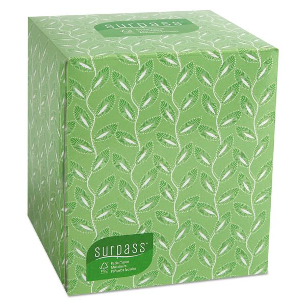 Kleenex Surpass 2-Ply Facial Tissues